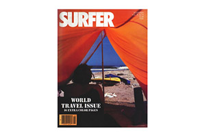 Traveler Vintage Surfer Cover Poster